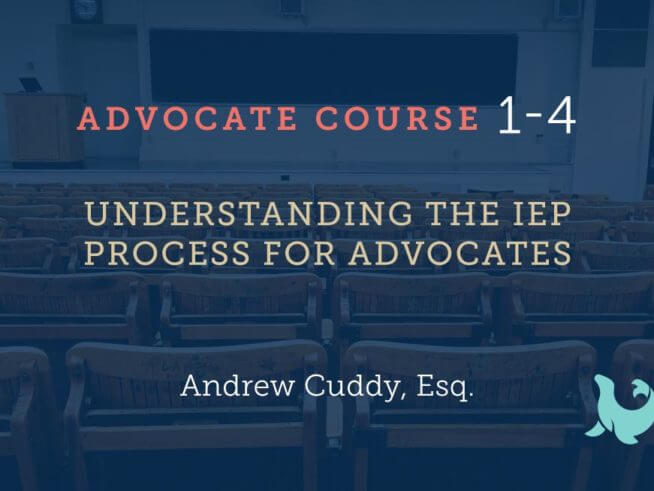 Understanding the IEP process for advocates