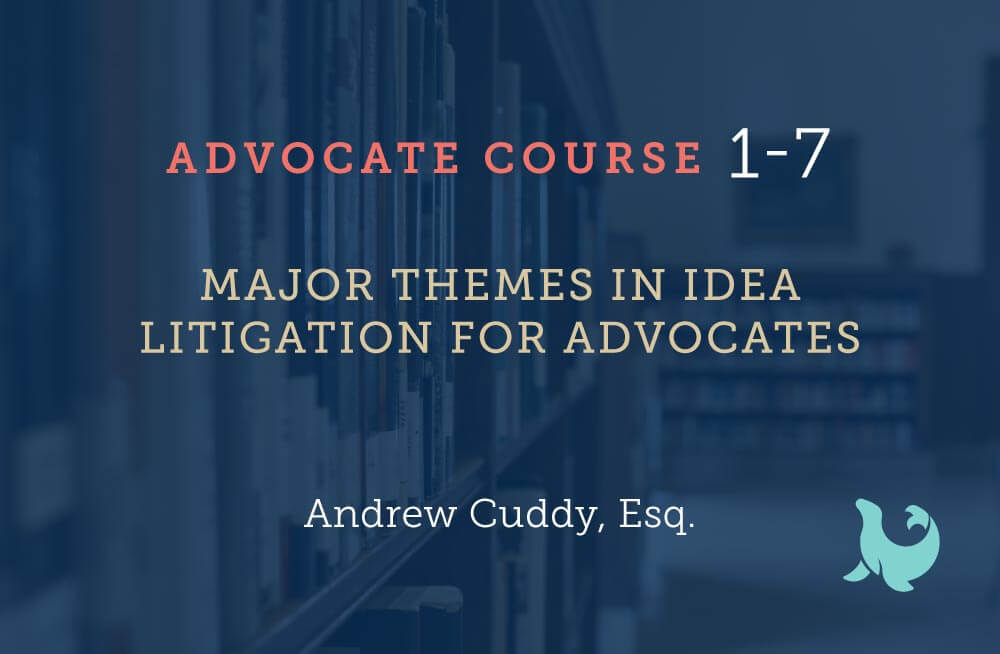Major themes in idea litigation for advocates