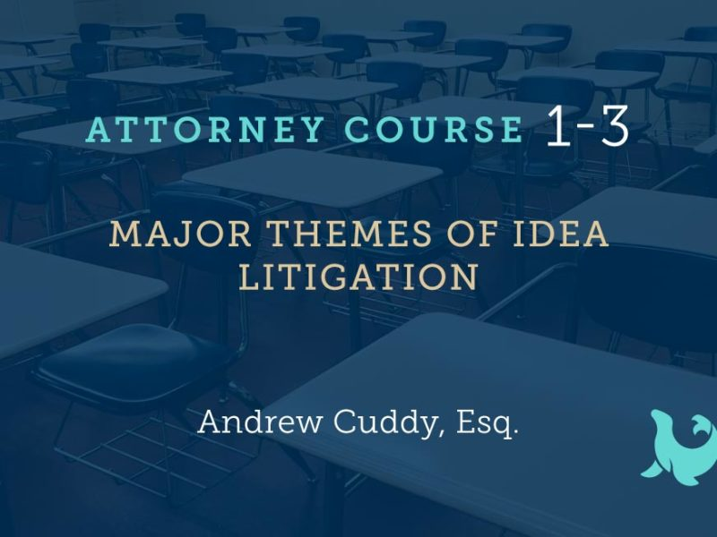 1-3: Major Themes of IDEA Litigation