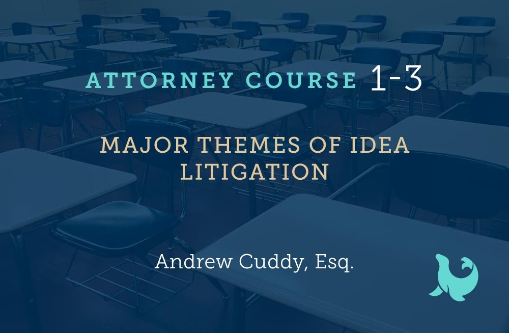 Major themes of idea litigation cover